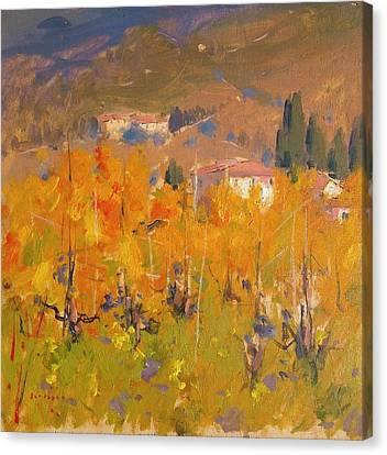 Impressionist Vineyard - Tuscany Canvas Print