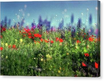 Impressionistic Springtime Canvas Print by Dubi Roman