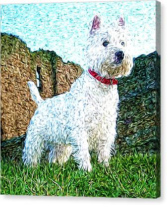 Impressionistic Westie Canvas Print by Laura Brightwood