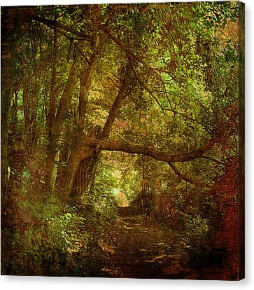 In A Forest Canvas Print by Inesa Kayuta