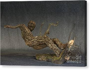 In An Instant A Sculpture By Adam Long Canvas Print