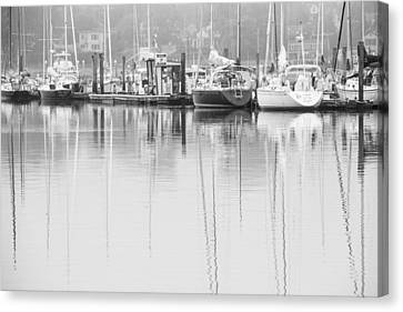 In Dock Canvas Print by Karol Livote