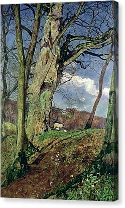 Lamb Canvas Print - In Early Spring by John William Inchbold