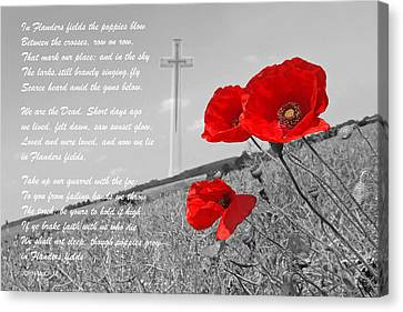 In Flanders Fields Canvas Print
