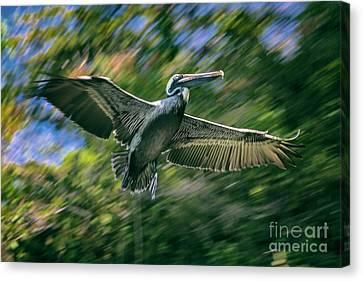Canvas Print - In Flight by Mariola Bitner