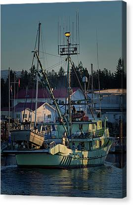 Canvas Print featuring the photograph In For Ice by Randy Hall