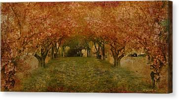 In My Garden Canvas Print by Inesa Kayuta