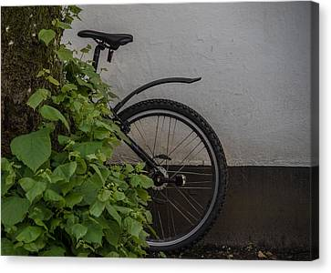 Two Wheeler Canvas Print - In Park by Odd Jeppesen