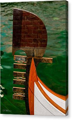 In Reflection Canvas Print by Christopher Holmes