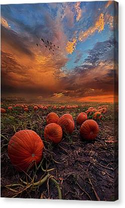 In Search Of The Great Pumpkin Canvas Print by Phil Koch