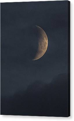 Canvas Print featuring the photograph In The Blue Hours by Alex Lapidus
