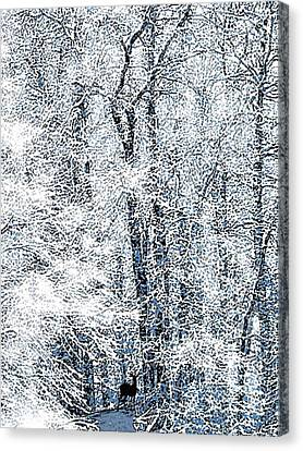 Clearing Canvas Print - In The Clearing by Catherine ONeil