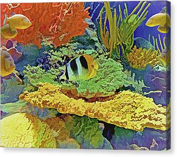 Canvas Print featuring the photograph In The Coral Garden 10 by Lynda Lehmann
