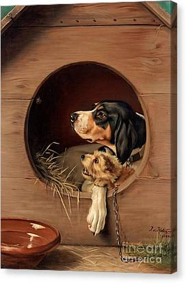 In The Doghouse Canvas Print