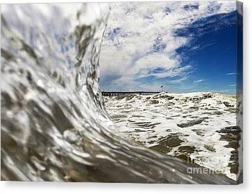 Wavy Canvas Print - In The Drink by Dan Holm