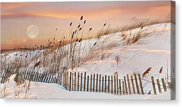 Canvas Print featuring the photograph In The Dunes by Robin-Lee Vieira