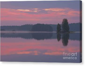 In The Early Morning Canvas Print by Veikko Suikkanen
