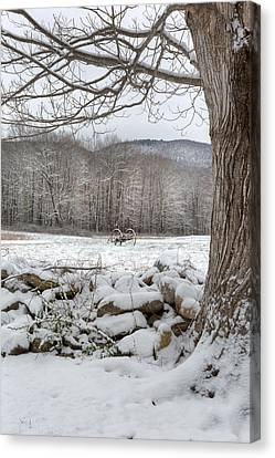 In The Field Canvas Print by Bill Wakeley