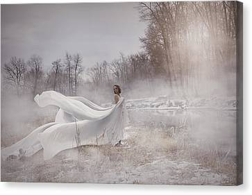 Canvas Print - In The Field  by Marcin and Dawid Witukiewicz