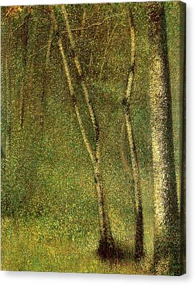 In The Forest At Pontaubert Canvas Print by Georges Pierre Seurat