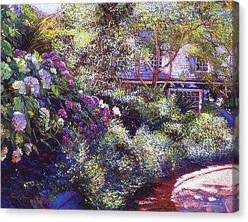 Canvas Print - Malibu Hydrangeas by David Lloyd Glover