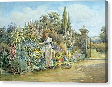 In The Garden Canvas Print by William Ashburner