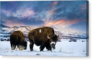 In The Grips Of Winter Canvas Print by TL Mair