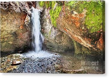 Pool In Cave Canvas Print - In The Grotto by David Millenheft