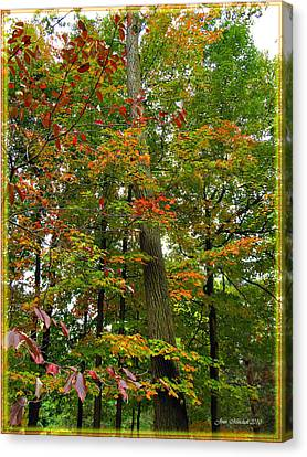 Canvas Print featuring the photograph In The Height Of Autumn by Joan  Minchak