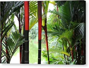 In The Jungle Canvas Print by Jessica Rose