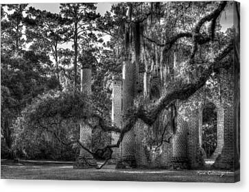 In The Light 2 Spanish Moss Old Sheldon Church Ruins Canvas Print by Reid Callaway