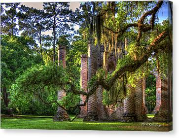 In The Light Spanish Moss Old Sheldon Church Ruins Canvas Print by Reid Callaway