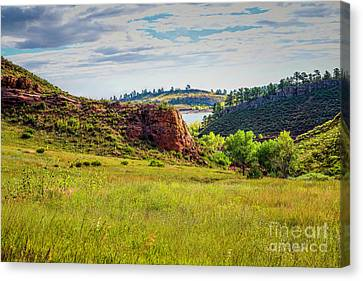 In The Meadow Canvas Print by Jon Burch Photography