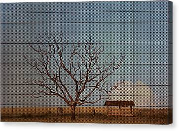 In The Middle Of Nowhere Canvas Print by Andre Orms