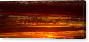 Lisa Phillips Canvas Print - In The Morning by Lisa Phillips