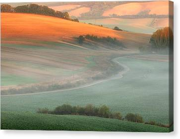 In The Morning Mist Canvas Print by Piotr Krol (bax)