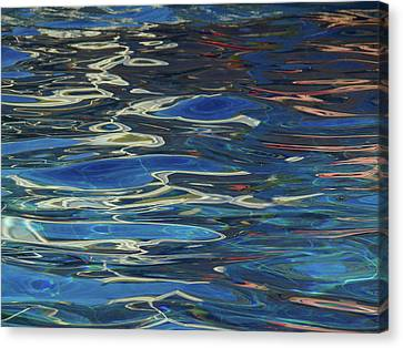 In The Pool Canvas Print