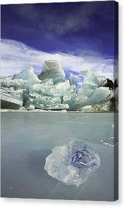 Matanuska Canvas Print - In The Rough by Ed Boudreau