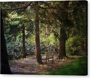 Canvas Print featuring the photograph In The Shade by John Rivera