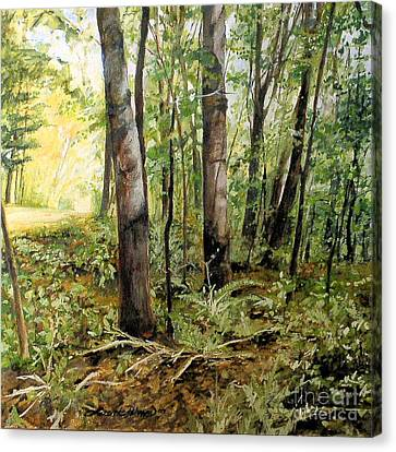 In The Shaded Forest  Canvas Print