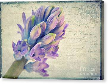 In The Spring Canvas Print by Angela Doelling AD DESIGN Photo and PhotoArt