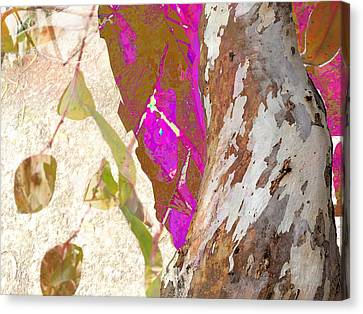 In The Trees Canvas Print by Darla Nyren