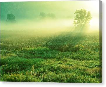 In The Valley Of The Autumn Mist Canvas Print by Todd Klassy