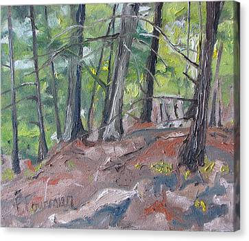 In The Woods No2 Canvas Print by Francois Fournier
