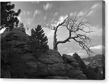 In Time There Is Motion Black And White  Canvas Print