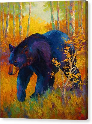 Wild Canvas Print - In To Spring - Black Bear by Marion Rose