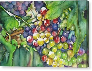 In Vino Veritas  Canvas Print by June Conte  Pryor