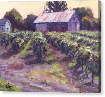 In Wine Country Canvas Print by Michael Camp