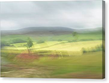 Canvas Print featuring the photograph In Yorkshire 1 by Dubi Roman
