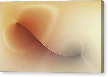 Incision Canvas Print by Wim Lanclus